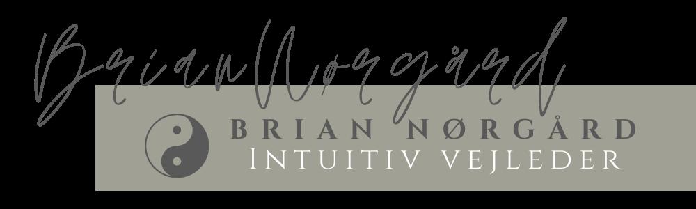 Brian Nørgård-intuitiv vejleder Logo